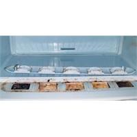 Buzdolapları Bakteri Yuvası