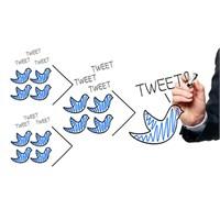 Sosyal Medya'da Kazanılan Zaferler