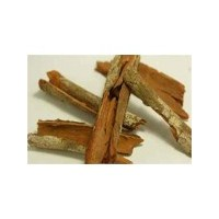 Barut Ağacı Kabuğu Ne İşe Yarar ?