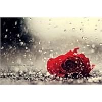 Benim İçin Üzülme' Den; Aşkın Tarifi