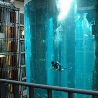 Bu Otel Lobisinde Binlerce Balık Var!