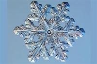 Kar Tanelerinin 35 Farklı Formu