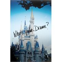 Disney World: Yalnızca Çocuklar İçin Değil