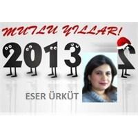 Güle Güle 2012, Hoş Geldin 2013