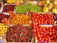Sebze Ve Meyveler, Sebze Meyve Saklama