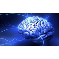 Elektrik Verilen Beyin Daha Hızlı Öğreniyor
