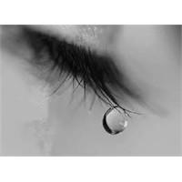 Niçin Gözyaşı Dökeriz?