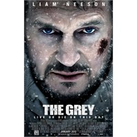 Dehşet Bir Film: The Grey
