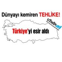 Dünyayı Kemiren Tehlike Türkiye'yi Esir Aldı