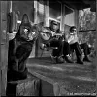 Blues Müziği Anlatan Fotoğraf…