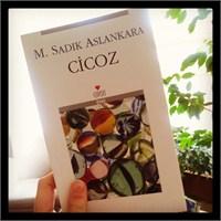 Okuduklarım #51: Cicoz - M.Sadık Aslankara