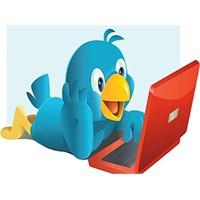 Sizin Twitter Hesabınız Kaç Puan ?