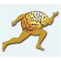 Koşan & Yenilenen Beyinlere