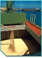 Gemilerde Tahıl Yüklemesi Hesabı Ve Solas Kriterle