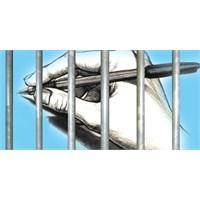 Pulliam Davası Ve Basın Özgürlüğü