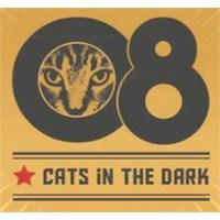 Cats İn The Dark