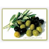 Zeytin Ve Çeşitleri | Zeytinyağı Ve Faydaları