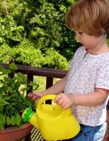 Çocuğunuzla Bir Bitki Yetiştirin