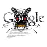 Google Adsense Optimizasyonu