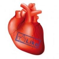 Facebook'tan Organ Bağışına Anlamlı Destek