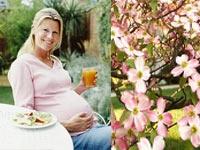 Hamilelikte Alınan Kiloları Nasıl Verebilirsiniz?
