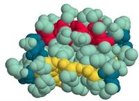 Şeker Hastalığı Ve Protein İlişkisi