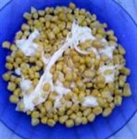 Kaşar Peynirli Mısır