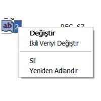 Kayıt Defteri Düzenleme Hatası
