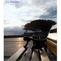 Rüzgarın Gölgesi- Carlos Ruiz Zafon