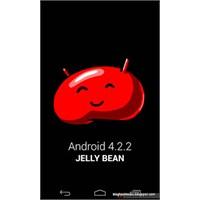 Android 4.2.2 Nexus 4' Te Göründü!