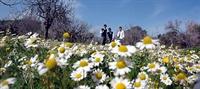 Bahar Yorgunluğunu Yenmek İçin Öneriler