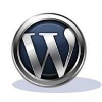 Wordpress Tema Türkçeleştirme Nasıl Yapılır?