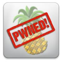 4.3.2 Untethered Jailbreak Çıktı!