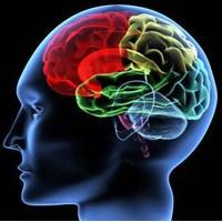 Akıl Mutasyonu