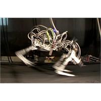 Dünyanın En Hızlı Robotu