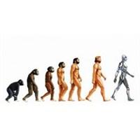 Evrimsel Programlama