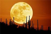 Ay Dünyadan Önce Mi Vardı?
