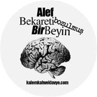 Online Roman Girişimi: Alef