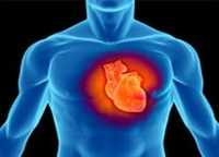 Ölümcül Kalp Çarpıntılarına Şok Cihaz Ceketleri