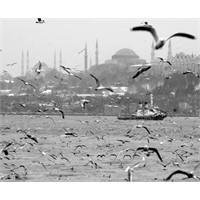 Yağmurda İstanbul'da nerelere gidilir?