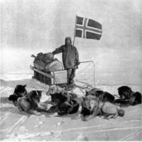 Kar Köpekleri, İhanet Ve Amundsen..