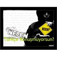 Türkçe, Turkchelesmesin