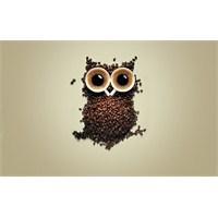 Kahve Türleri Ve Ruh Haliniz