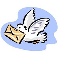 Spame Düşmeyen Mail Gönderin