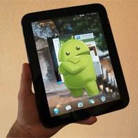 Steroitli Hp Touchpad Geliyor…