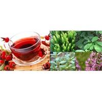 Sonbahara İlaç Gibi Bitki Çayları