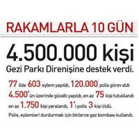 Gezi Parkı'nın 10 Günü İnfografik Gösterim!