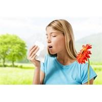 Alerjiye Karşı Önleminizi Alın