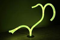 Boyut… Şekil.. İşte Işık Dalları