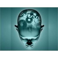 İnsan Beyninin Kullanma Kılavuzu